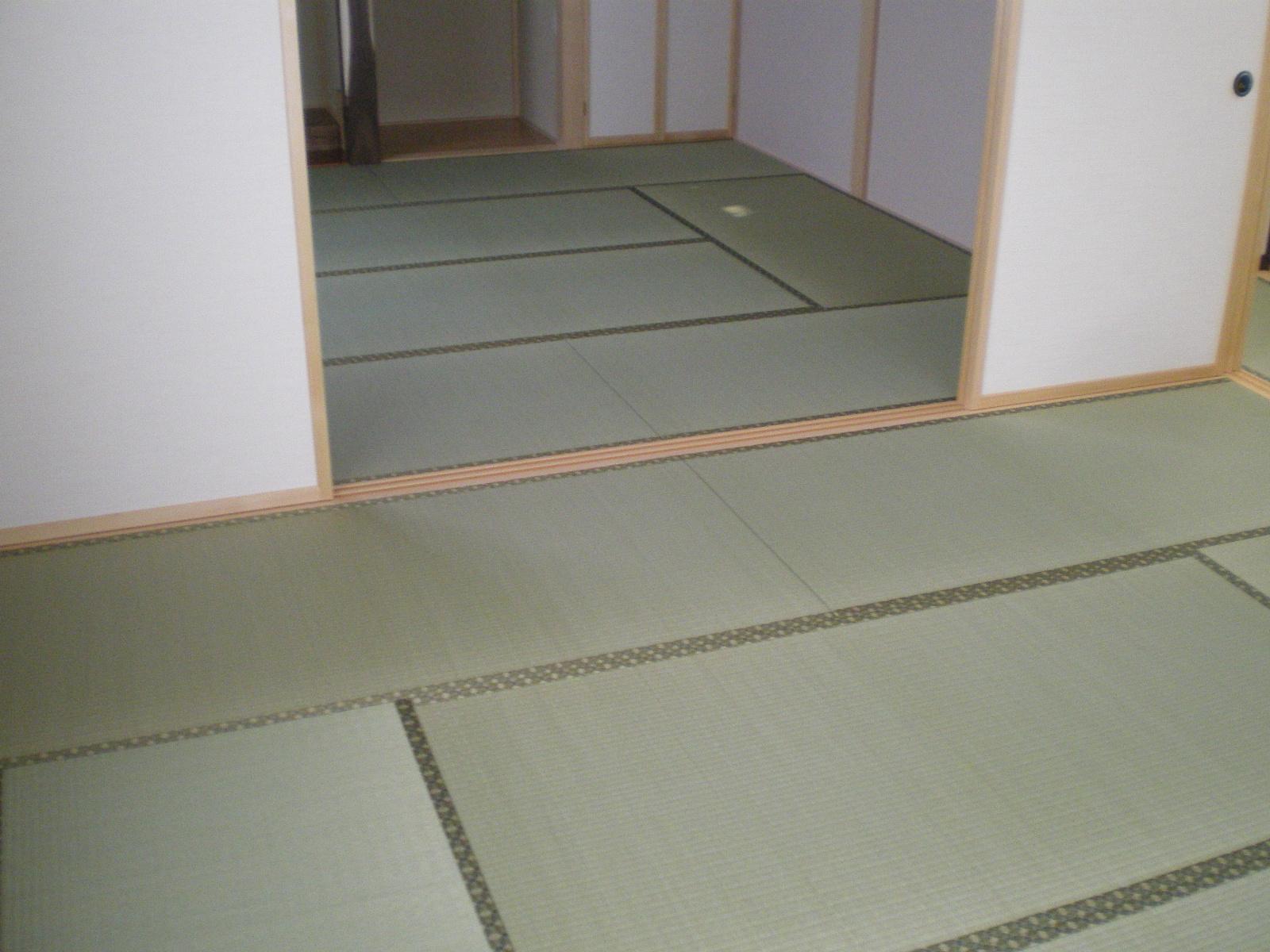 IMGP0020